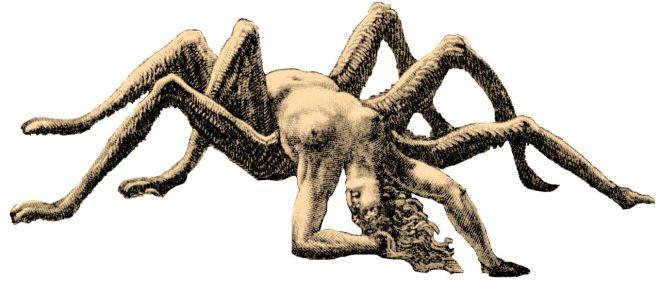 1280px-Arachne