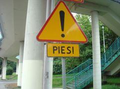 pie1a