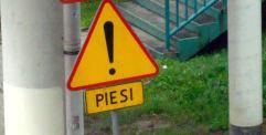 pie1b