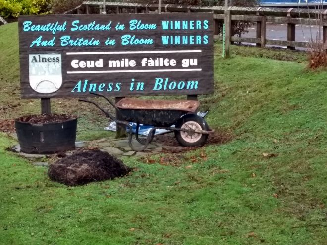Alness in bloom